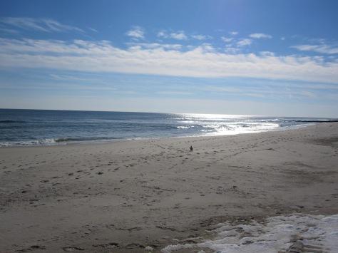jan-beach-11-26